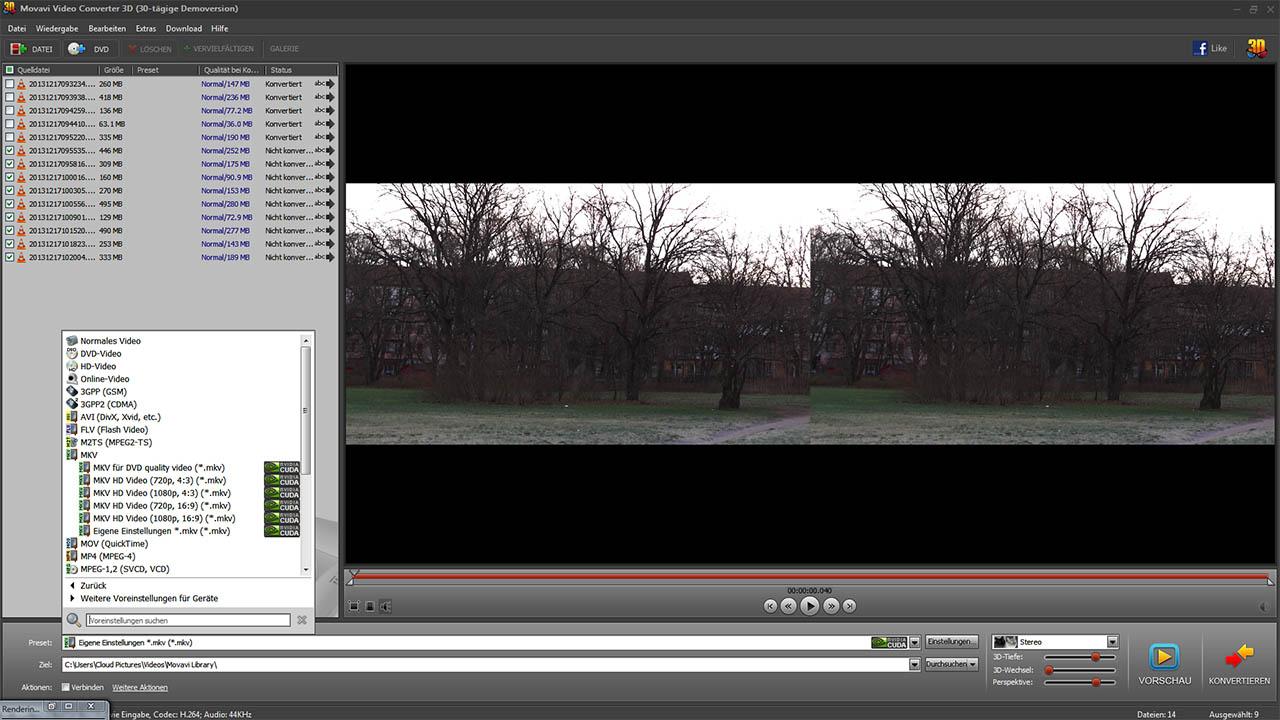 Movavi 2D Video Codec Auswahl
