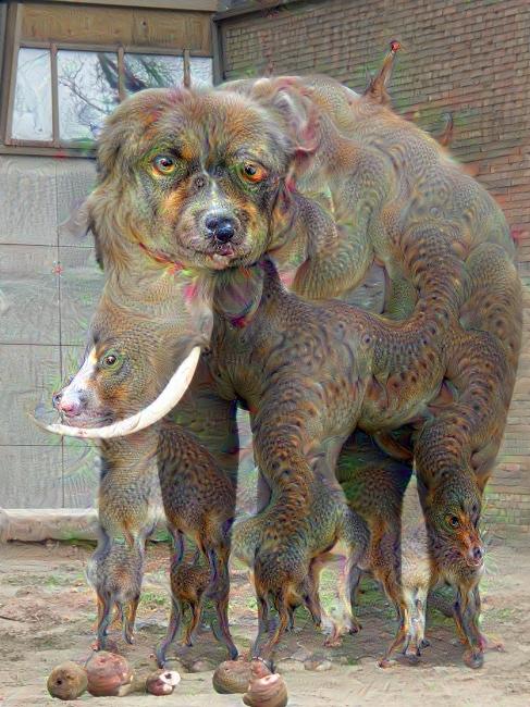 Elefant nachdem er von DeepDream durchmengt wurde.