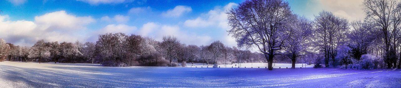 Hasenheide Winter Panorama 2