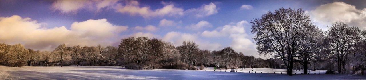 Hasenheide Winter Panorama 3