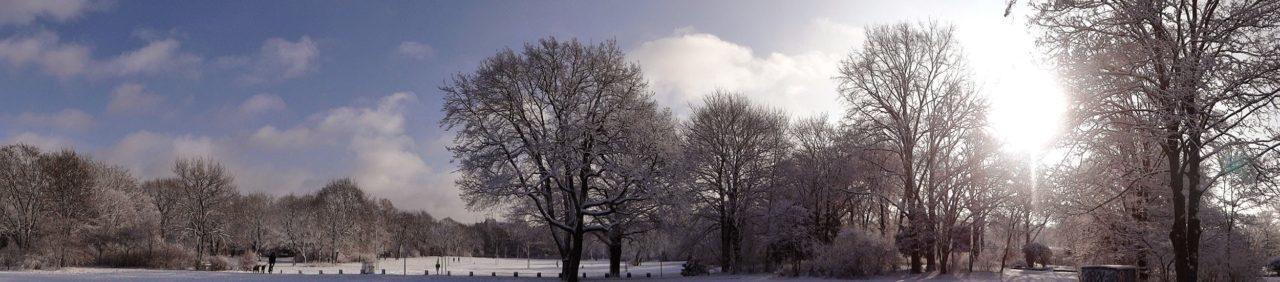 Hasenheide Winter Panorama 4
