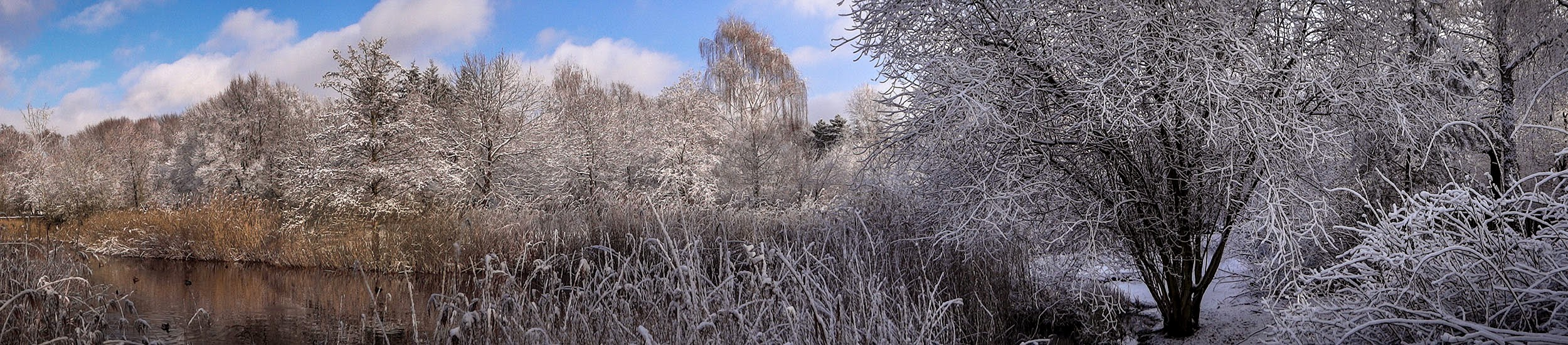 Hasenheide Winter Panorama 5