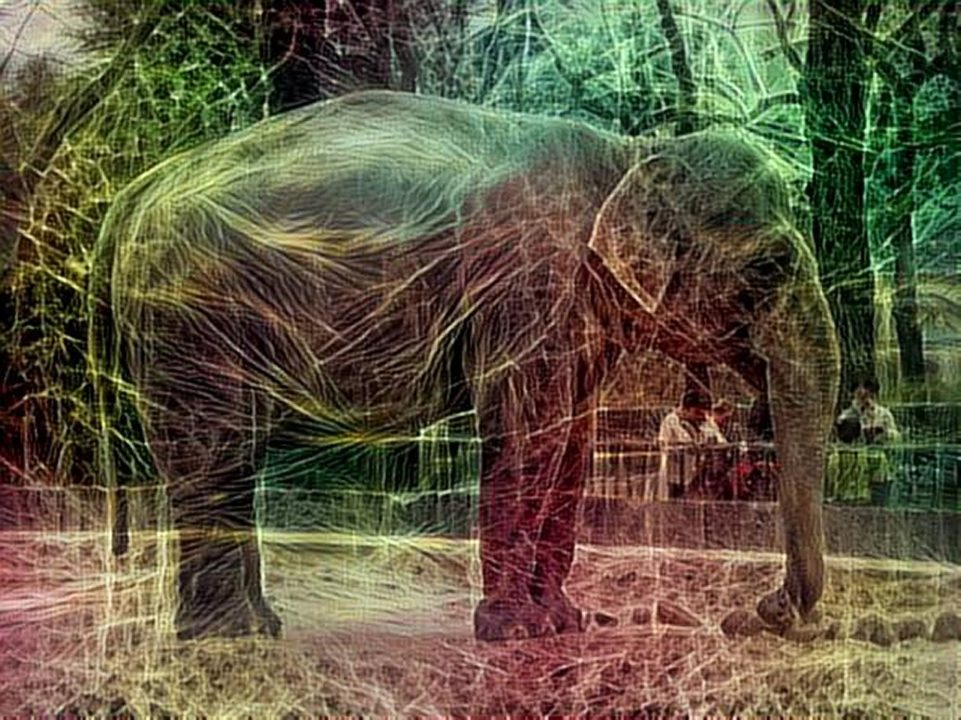 dreamscope Elefant Zoo Berlin