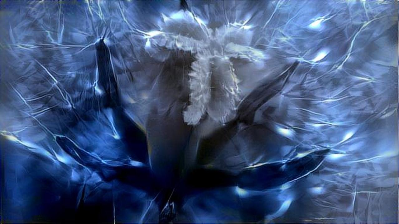 dreamscope Pflanze 3