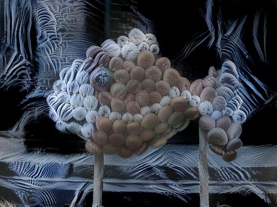dreamscope Fisch aus Kürbis