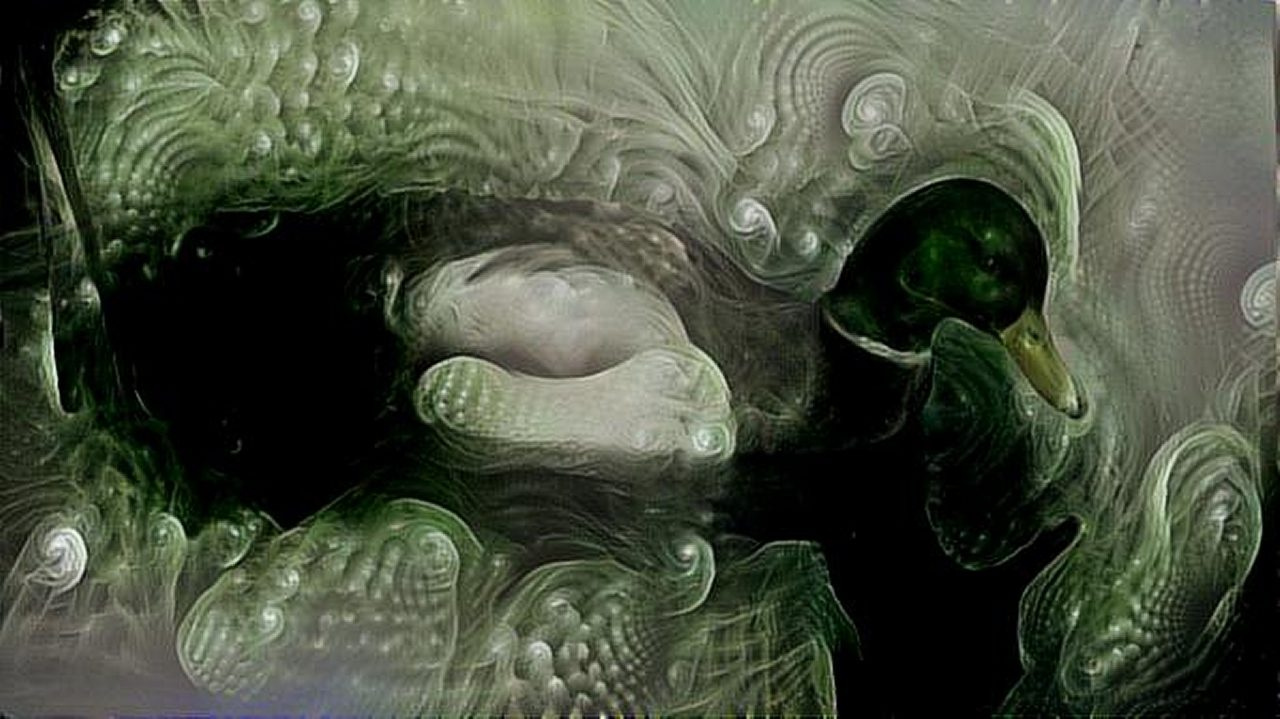 dreamscope Hasenheide 9