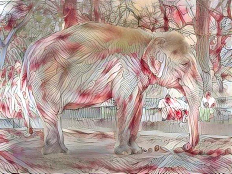 deamscope Elefant Zoo Berlin 5