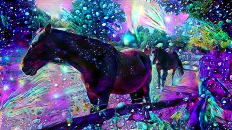dreamscope Pferde Gutshof Britz 2