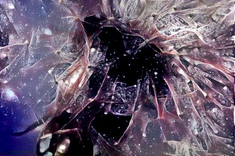dreamscope Pflanze Pusteblume 2